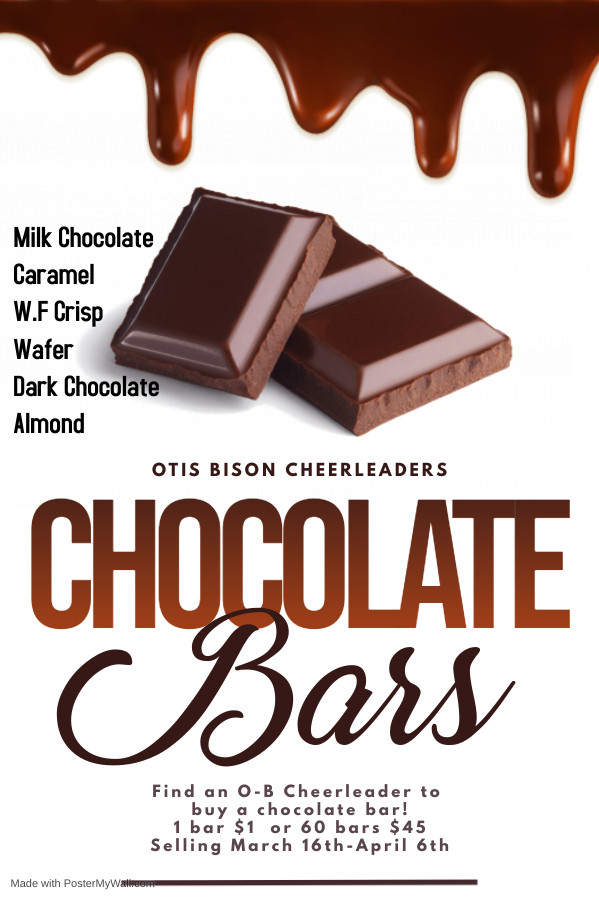 Chocolate Bars for Sale