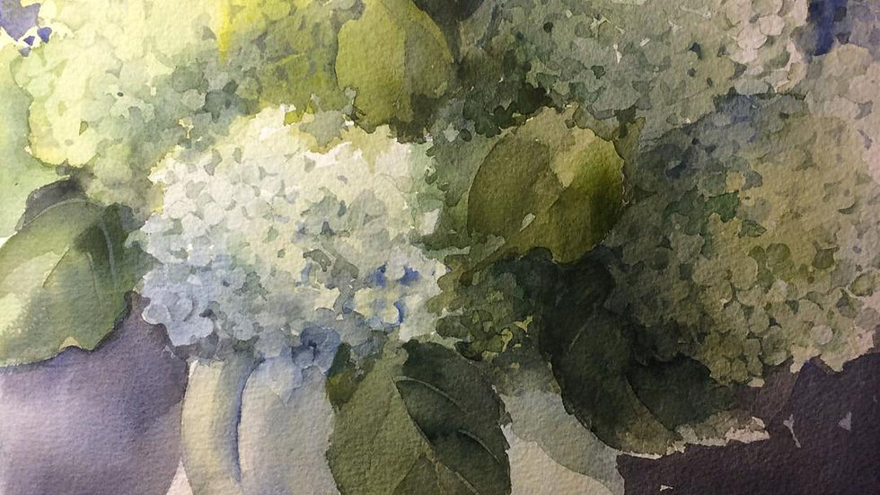 "Mary LoPiccolo ""Hydrangea in White Pitcher""watercolor 13x17 unframed"