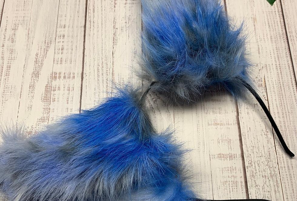 Baby Blue Kitten Ears