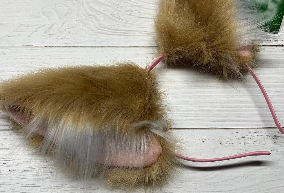 Beige & White Kitten Ears