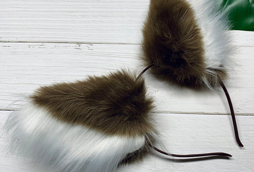 Chestnut Kelpie Puppy Ears