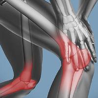 Muscoskeletal.jpg
