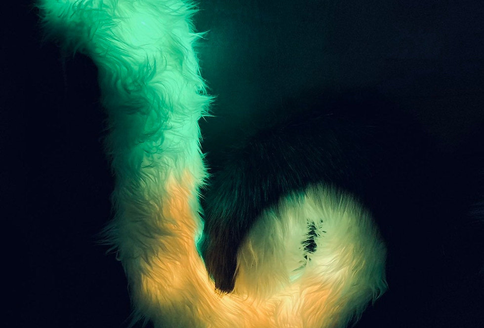 Glowing Yellow and Black Curled Malamute Husky Fursuit Tail