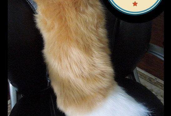 Medium Beige with White Tip Fursuit Fox Tail
