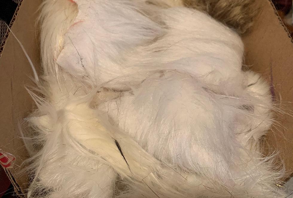 3 pounds of Neutral Fur Scraps Box
