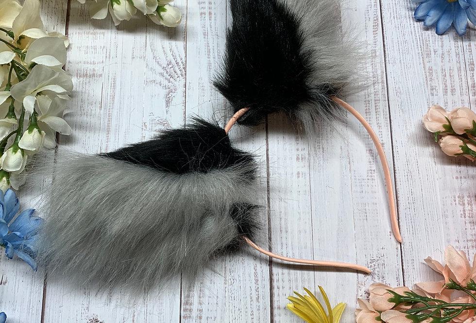 Black and Gray Kitten Ears