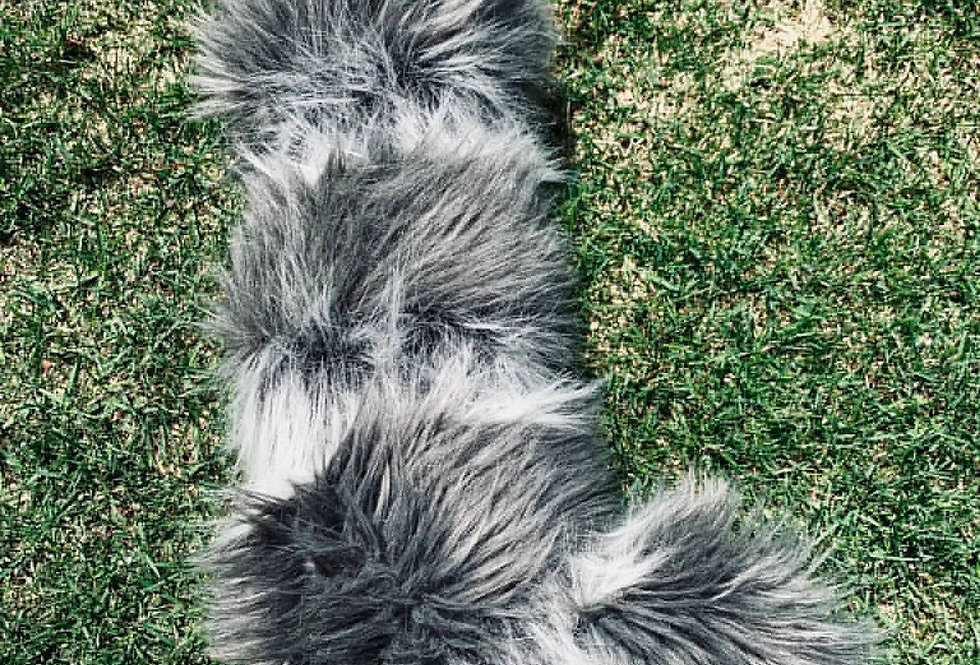Curvy and Fluffy Raccoon Fursuit Tail