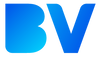 Brandvibe logo 3-01.png