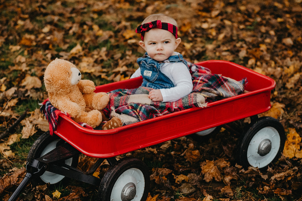 Fall Season - Mommy and Me Photography Session in York, PA  and Felton, PA  with Taylor Slusser Photography, Central PA Family Photographer