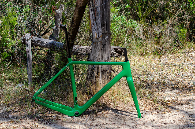 Lizard Green Adventure C