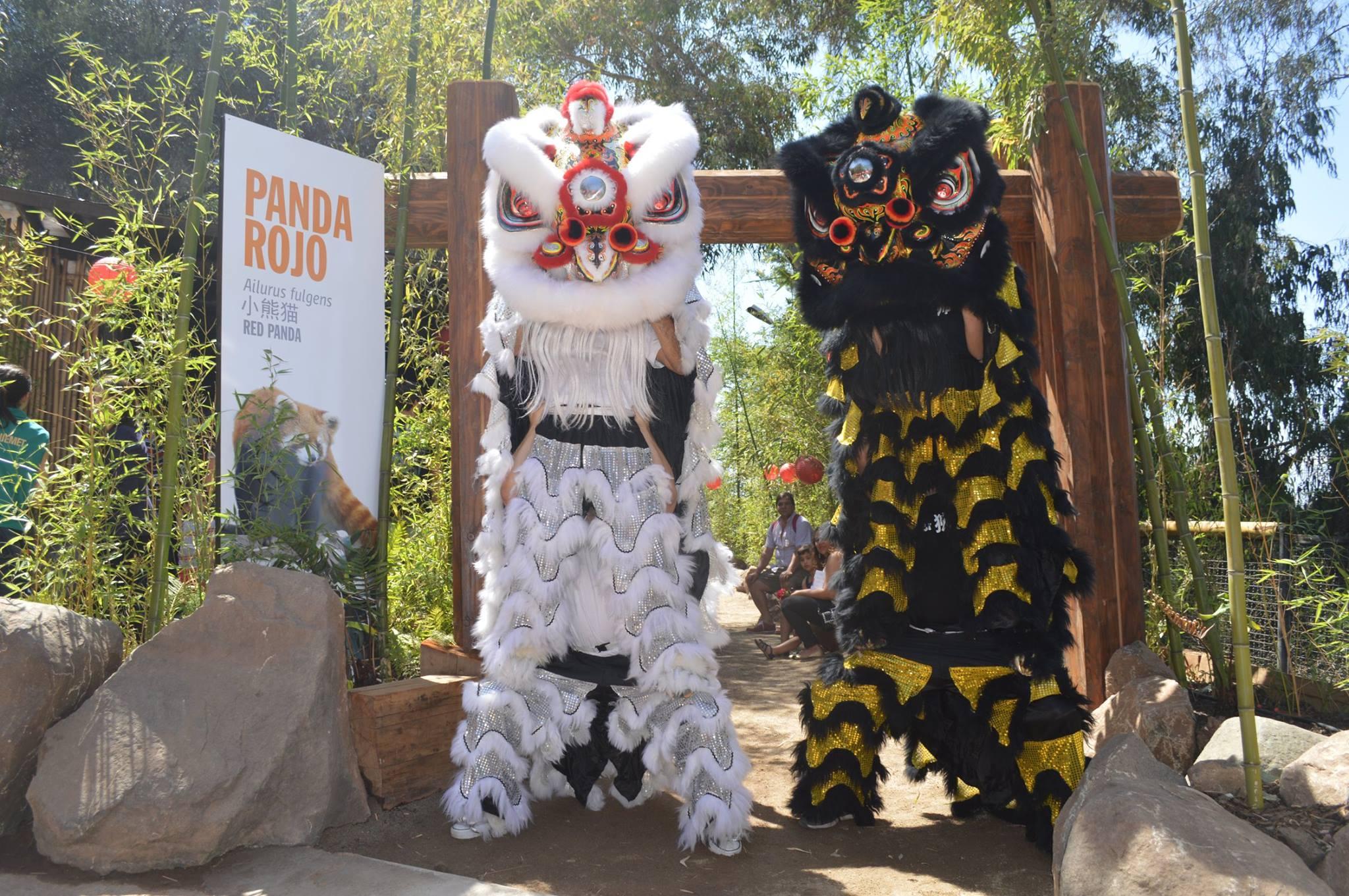 Bienvenidos Pandas Rojos