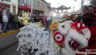 Carnaval de 10 leones chinos en la Fiesta de la Primavera en Pichilemu, Noviembre 2018