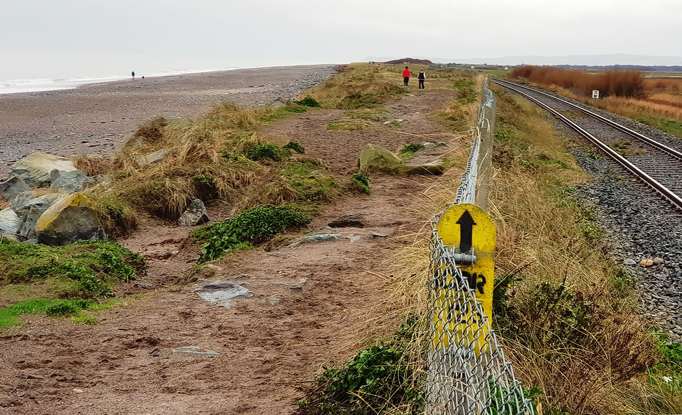 Kilcoole Beach Erosion - Copy.jpg