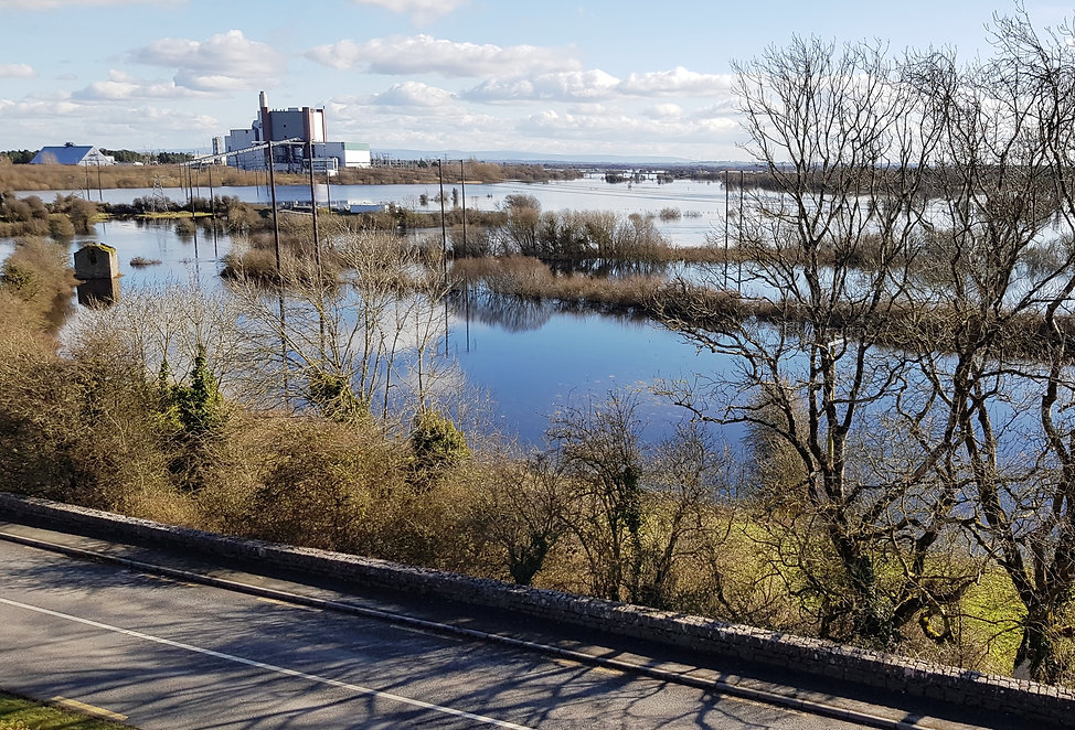 Shannonbridge Flooding 14.3.20 .jpg