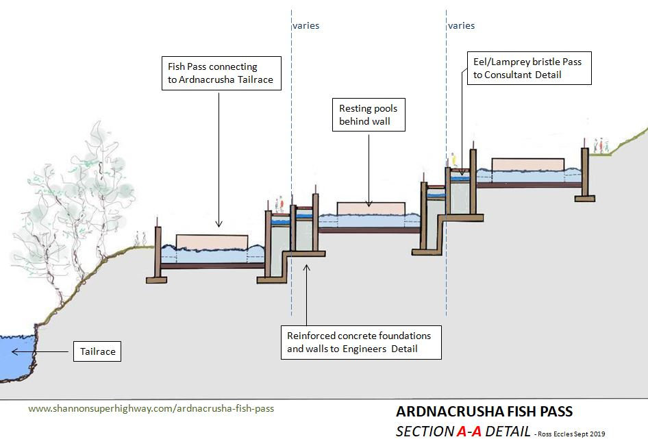 A & P Fish Ladders 5.JPG