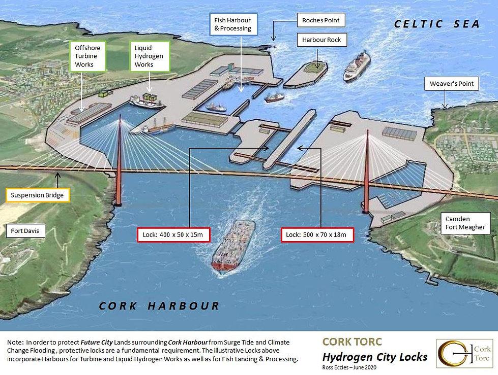 Cork Torc - Linkedin 29.6.20.JPG