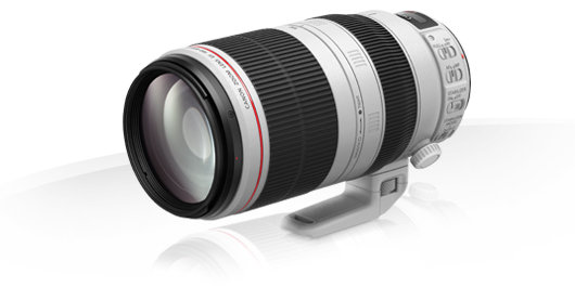Canon 100-400mm F4.5-5.6L Is Ii Usm