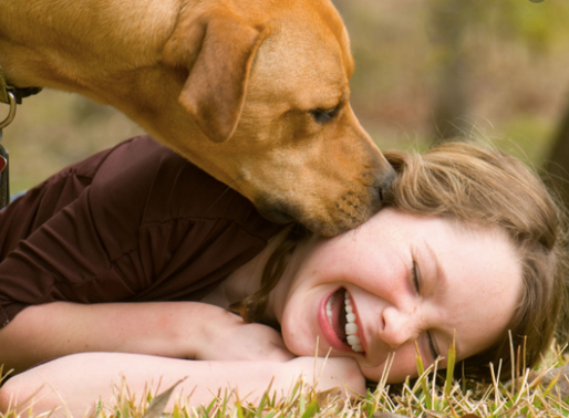 Do People or Pets Make Better Friends?