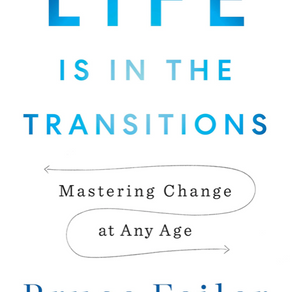 """On """"Life is in the Transitions"""" and Stories"""
