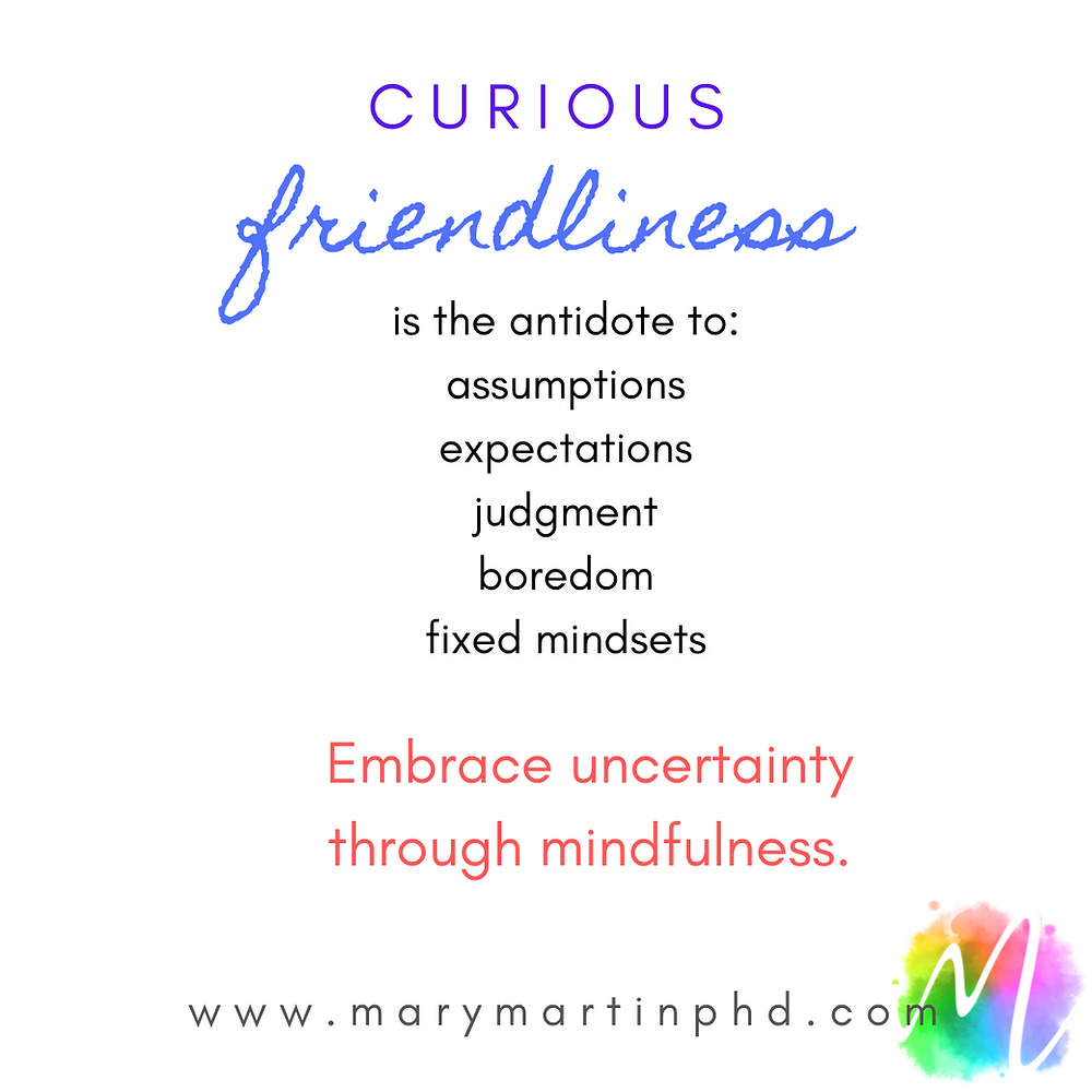 Curious friendliness is the antidote to assumptions, judgment, boredom and fixed mindsets. Embrace uncertainty through mindfulness.