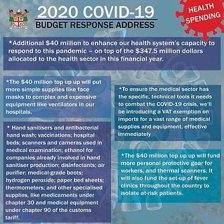 2020 Covid-19 Infographic 3.jpg