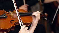 First-Violin--Characteristics-of-a-Great