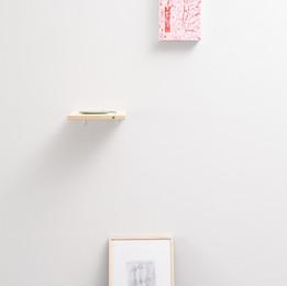 "西條茜 + 嶋春香  ""rhizome"" (2017) Akane Saijo,Haruka Shima ""rhizome""  installation view.  Photo:Takeru Koroda"