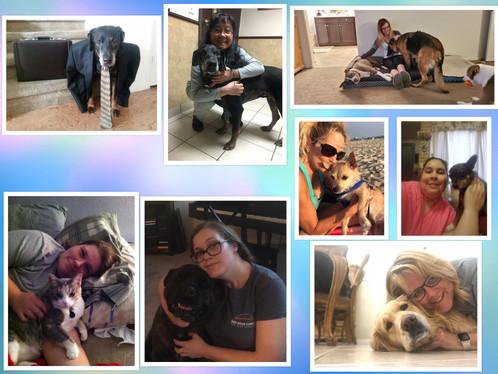 T FB Pets Challenge 2.jpg