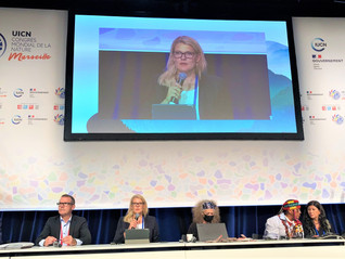 IUCN World Conservation Congress, 2021