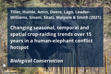 Tiller, L. N., T. Humle, R. Amin, N. J. Deere, B. O. Lago, N. Leader-Williams, F. K. Sinoni, N. Sitati, M. Walpole, and R. J. Smith. 2021. Changing seasonal, temporal and spatial crop-raiding trends over 15 years in a human-elephant conflict hotspot. Biological Conservation 254:108941.