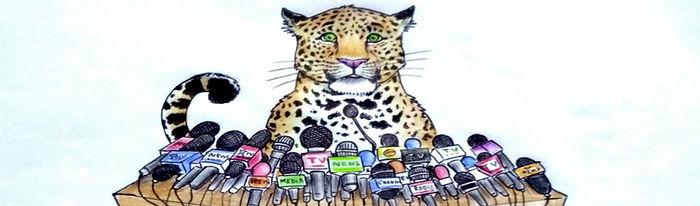 Medialeopard.jpg