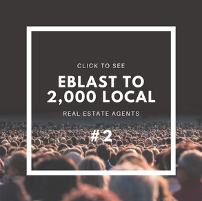 Click to see Eblast to 2,000 Local Re
