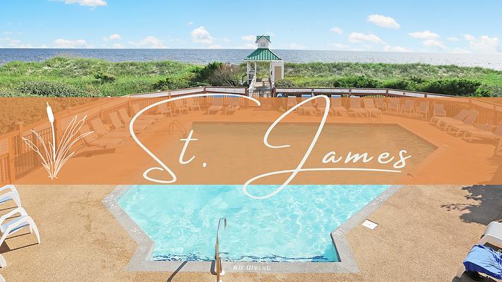Diann Sauble-St.James (2).png