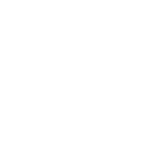 PalmettoCreek-WHITE.png