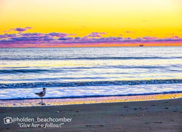 HoldenBeach-Watermark--17.jpg