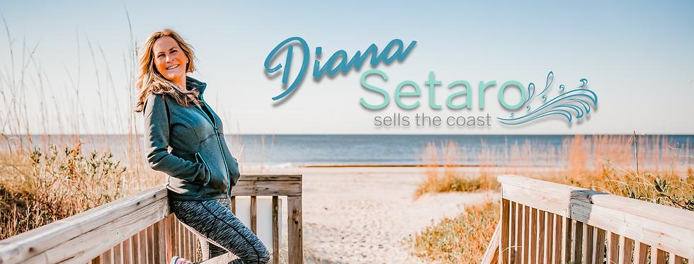 Diana Setaro Headers.png