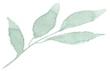 helen-leaf.png