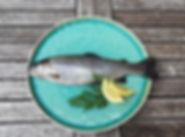 frische Fische, Forelle