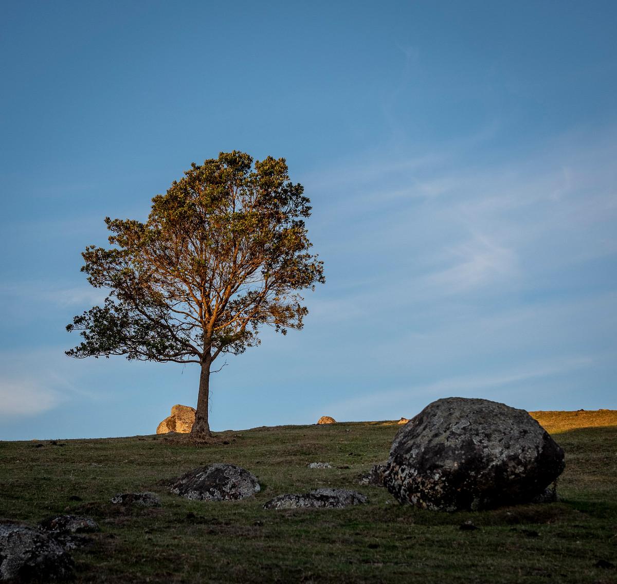 Siddho-Photography-LS-C-24.jpg