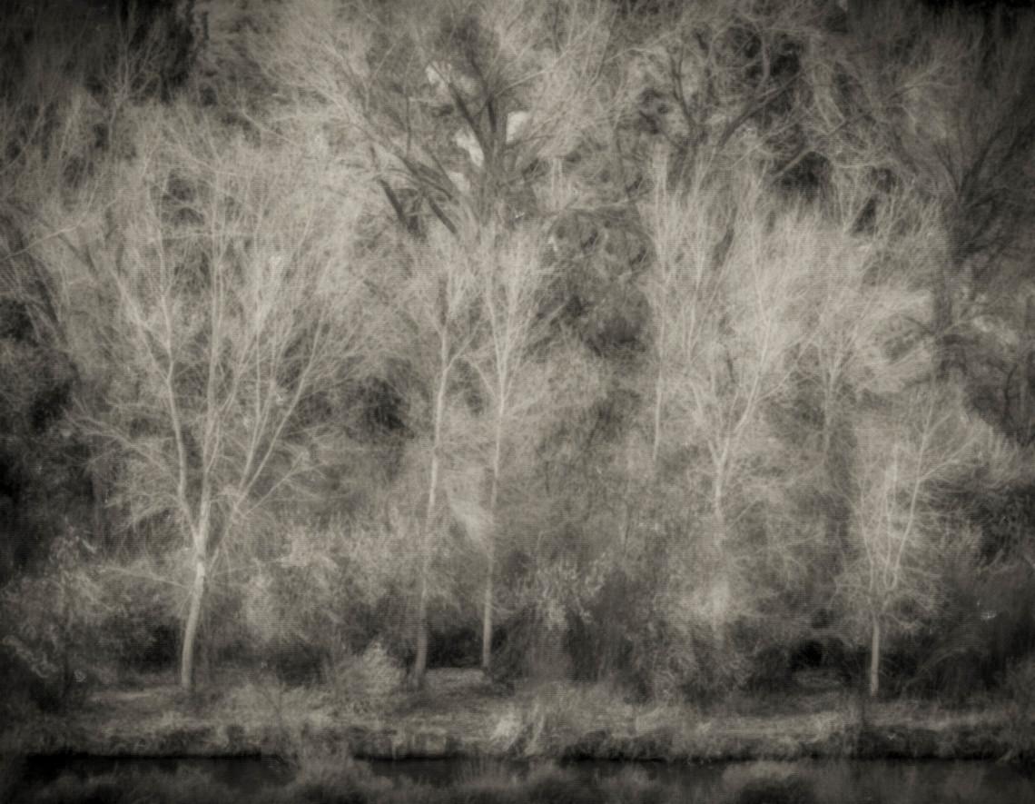 Siddho-Photography-LS-BW-15.jpg