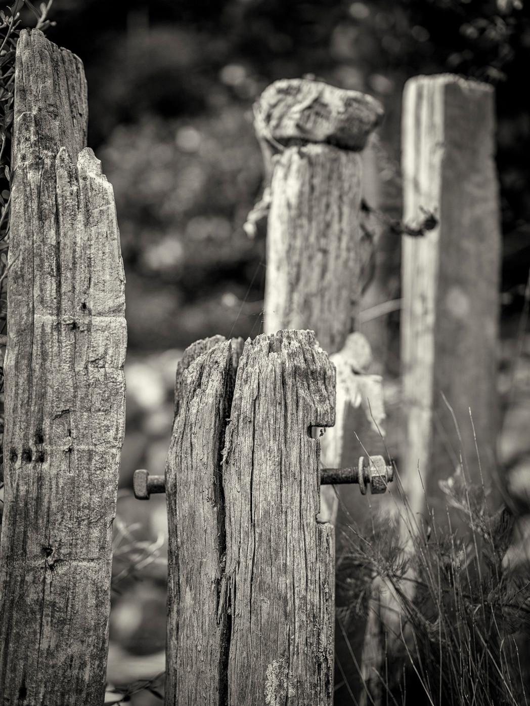 Siddho-Photography-WS-BW-22.jpg