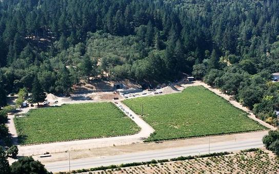 aerial of vineyard