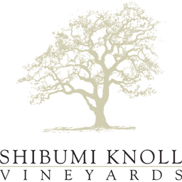 logo_shibumi.png