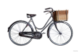 Lady Hampton's luxury bicycle