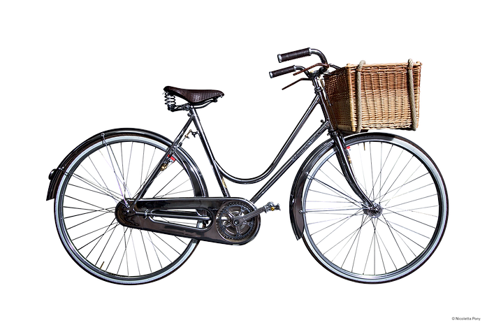 Lady Hampton's  elegant extremely feminine bicycle