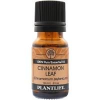 cinnamon_leaf_eo_front_1.jpg