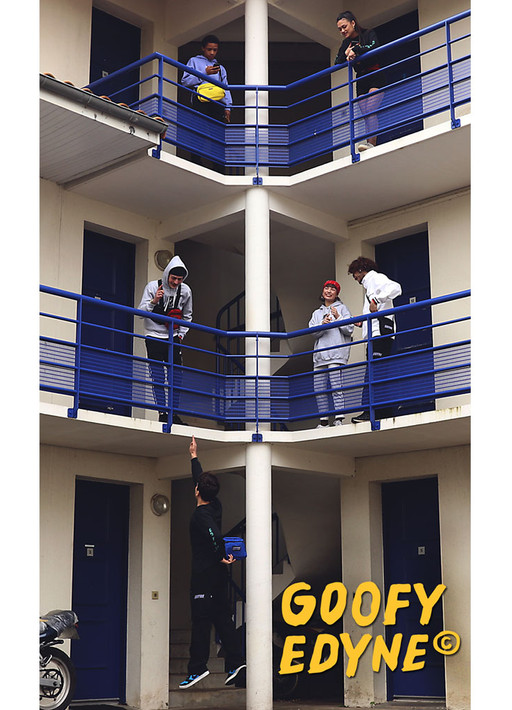 goofy_video.jpg