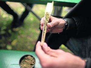 Estudo liga dependência em cannabis a risco maior de esquizofrenia