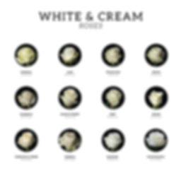 White-roses.jpg