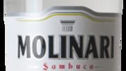 Molinari Sambuca 0.7 Ltr